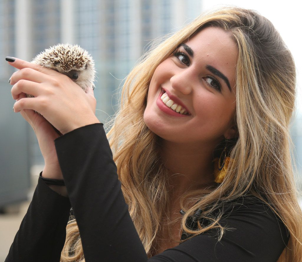 Michelle Mejia photographed with her hedgehog, Tingo, at her Dallas apartment.