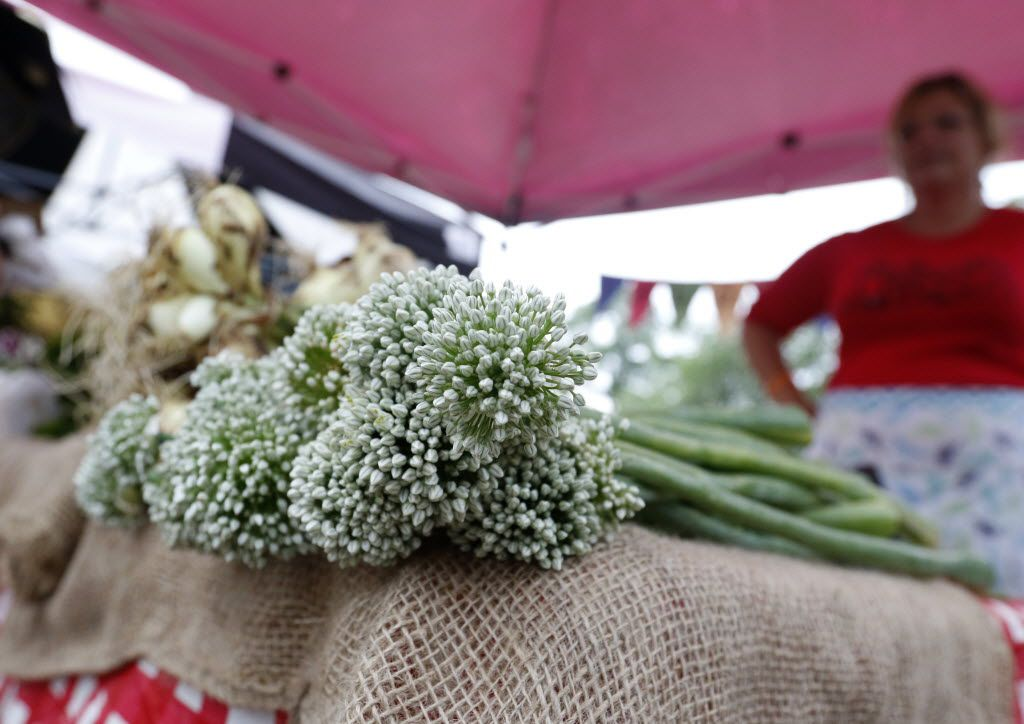 Green onion blossoms at the Baugh Farms booth at the White Rock Farmers Market in Dallas on May 9, 2015. (Rose Baca/The Dallas Morning News)