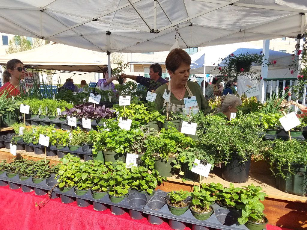 A merchant sells herbs and greens at the Covington Farmers Market in Covington, La. The market is open every Saturday from 8 a.m. until noon.