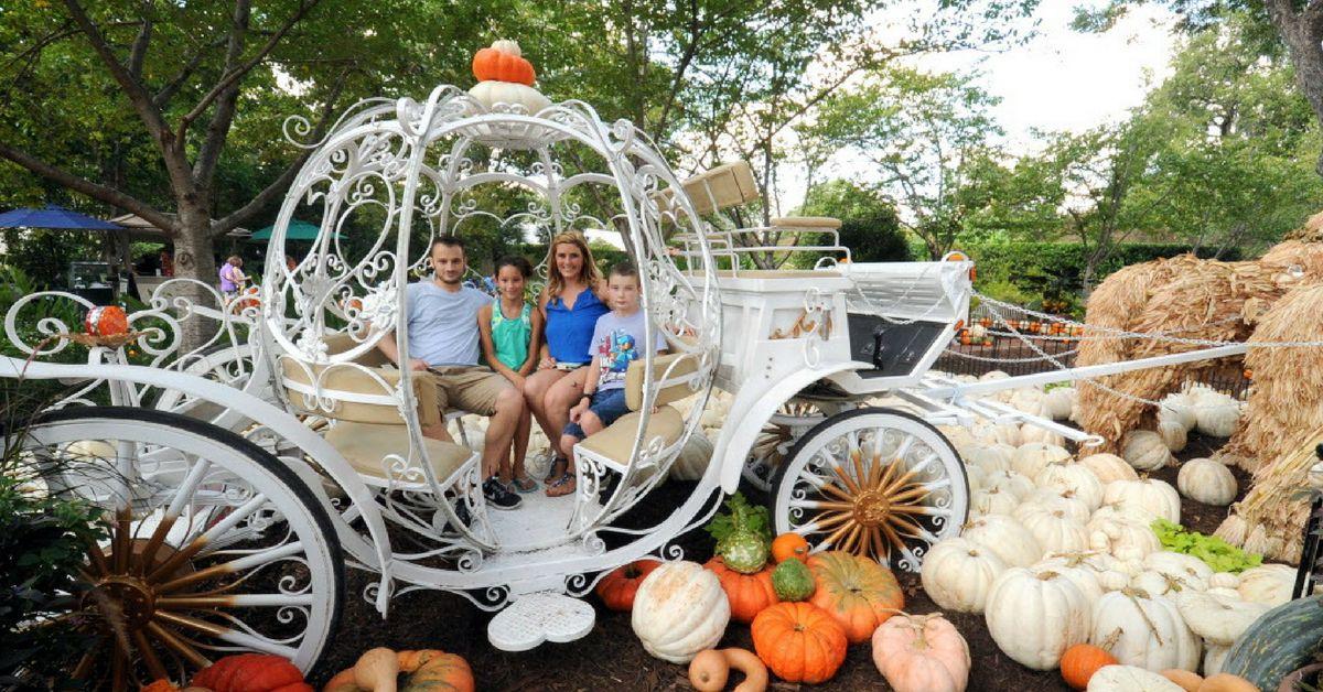 El Dallas Arboretum es uno de los lugares para visitar durane el otoño./Alexandra Olivia foto especial para DMN.