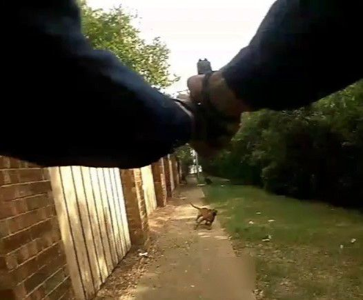 Body-cam footage shows Arlington officer fatally shooting