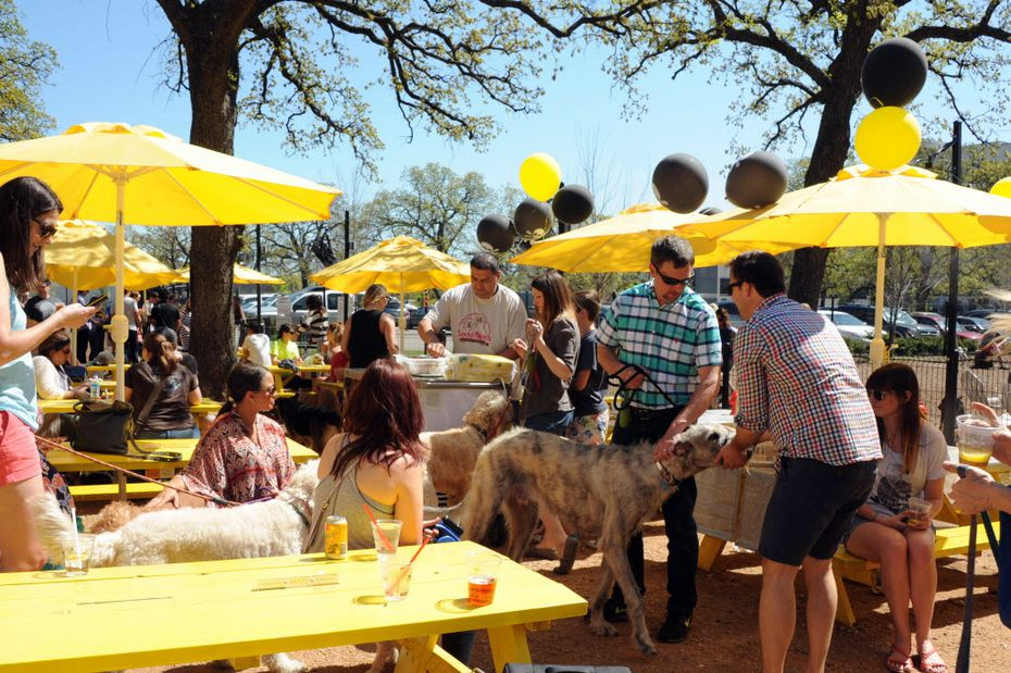 Dogs can even have organized birthday parties on the deck at Mutts Canine Cantina.