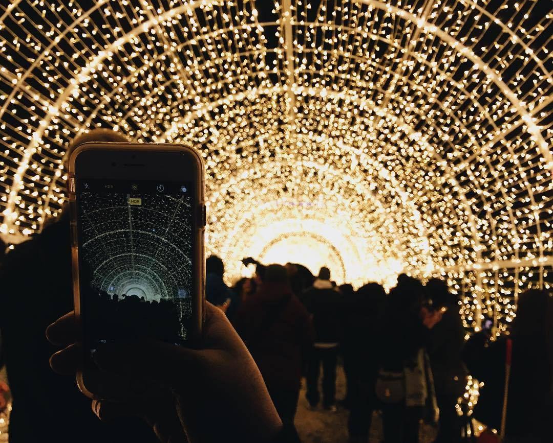 El laberinto de Enchanted Christmas en Arlington, Texas. FACEBOOK ENCHANTED CHRISTMAS.