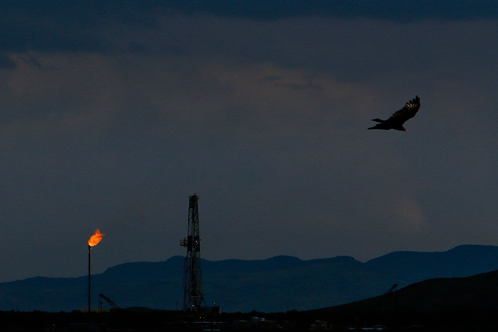 A vulture soars over an Apache Corp. flare and drilling rig north of the Davis Mountains in Balmorhea, Texas.
