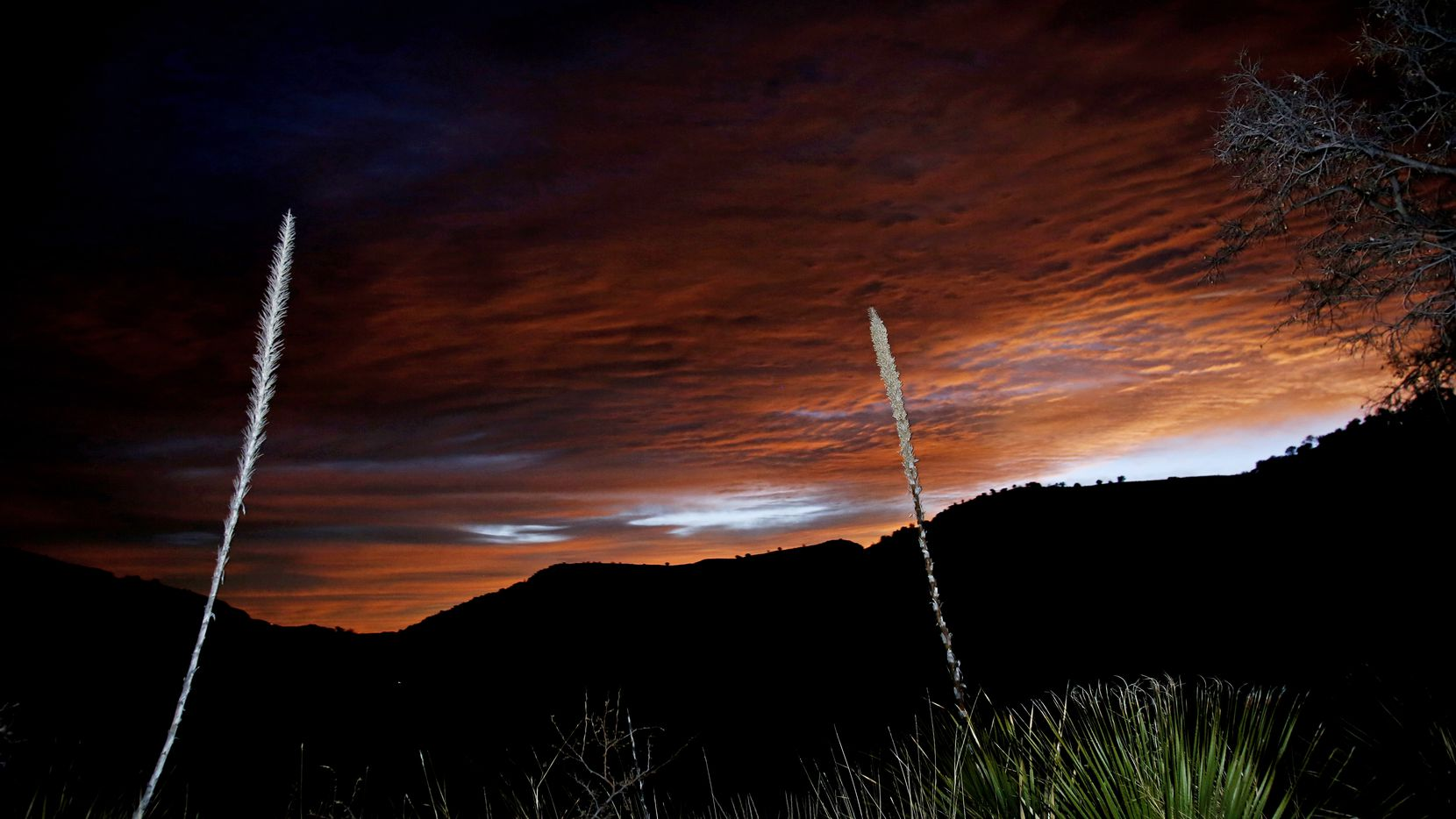 The first light of dawn shows over the mountains from the Indian Lodge in Davis Mountains State Park in Fort Davis Texas.  (Guy Reynolds/The Dallas Morning News)
