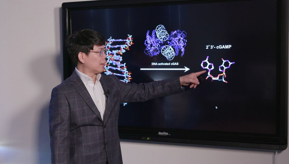 Dr. Zhijian  James  Chen of UT-Southwestern last week was named winner of the prestigious 2019 Breakthrough Prize in Life Sciences.