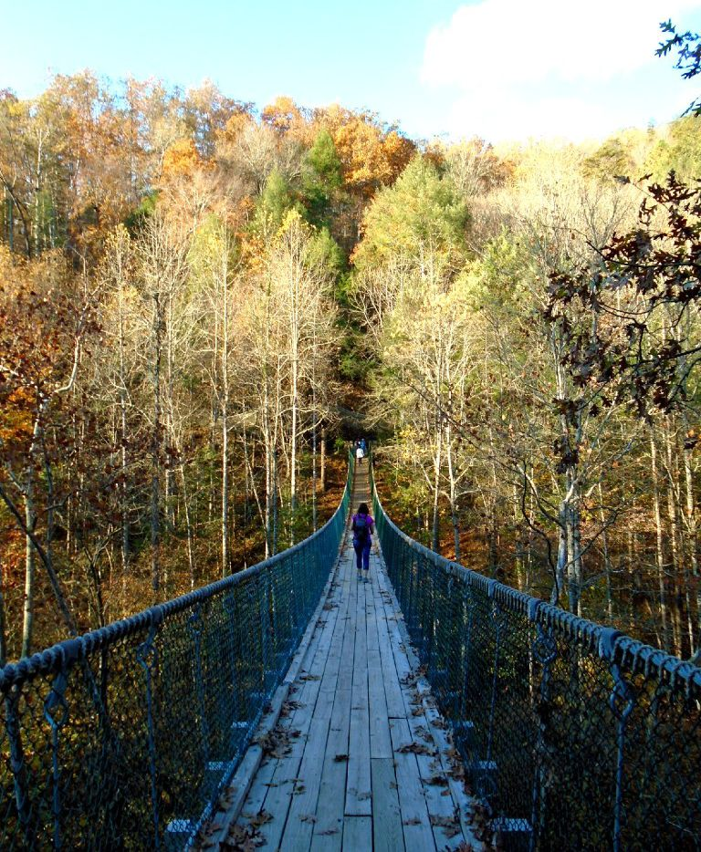 At Foxfire Mountain Adventure Park, tucked in the mountains near Sevierville, zip over treetops, scale a climbing wall, or cross the Bridge to Prosperity, a long, breathtaking swinging bridge that spans a gorge.
