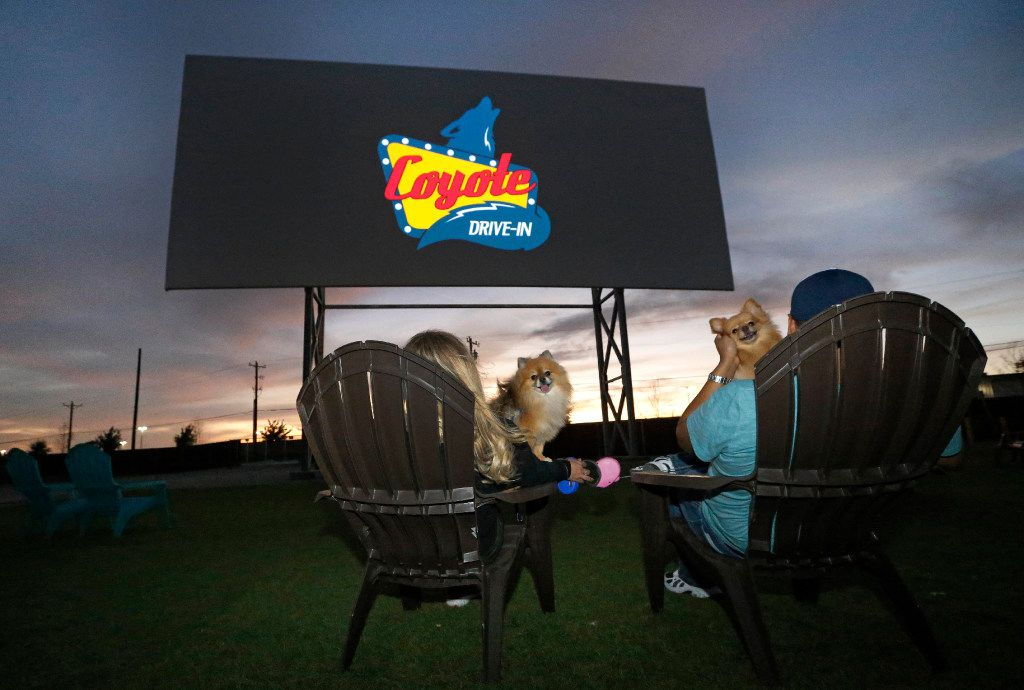 """Tina and Art Lira of Lewisville and their dogs """"Amador"""" and """"Lola"""" settle in to watch the """"Coming Attractions"""" reel at the Coyote Drive-In in Lewisville, Texas, photographed on Saturday, October 29, 2016. (Louis DeLuca/The Dallas Morning News)"""