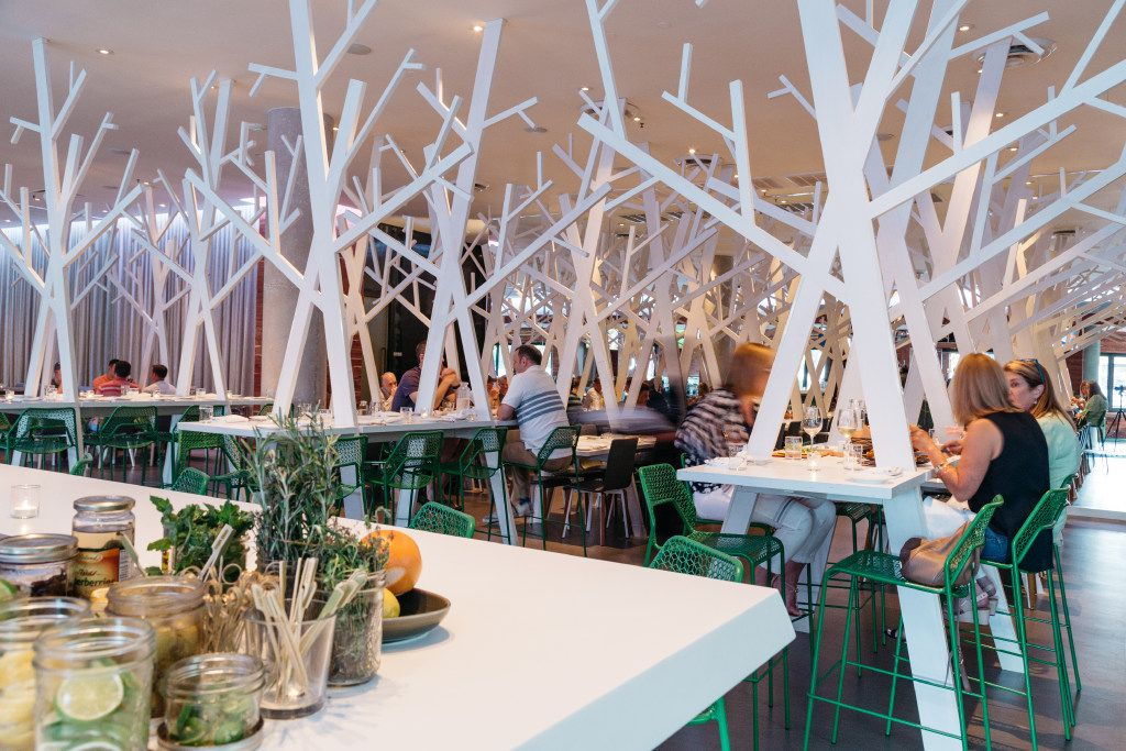 Cedar Grove restaurant in Dallas has a nature-inspired dining room.