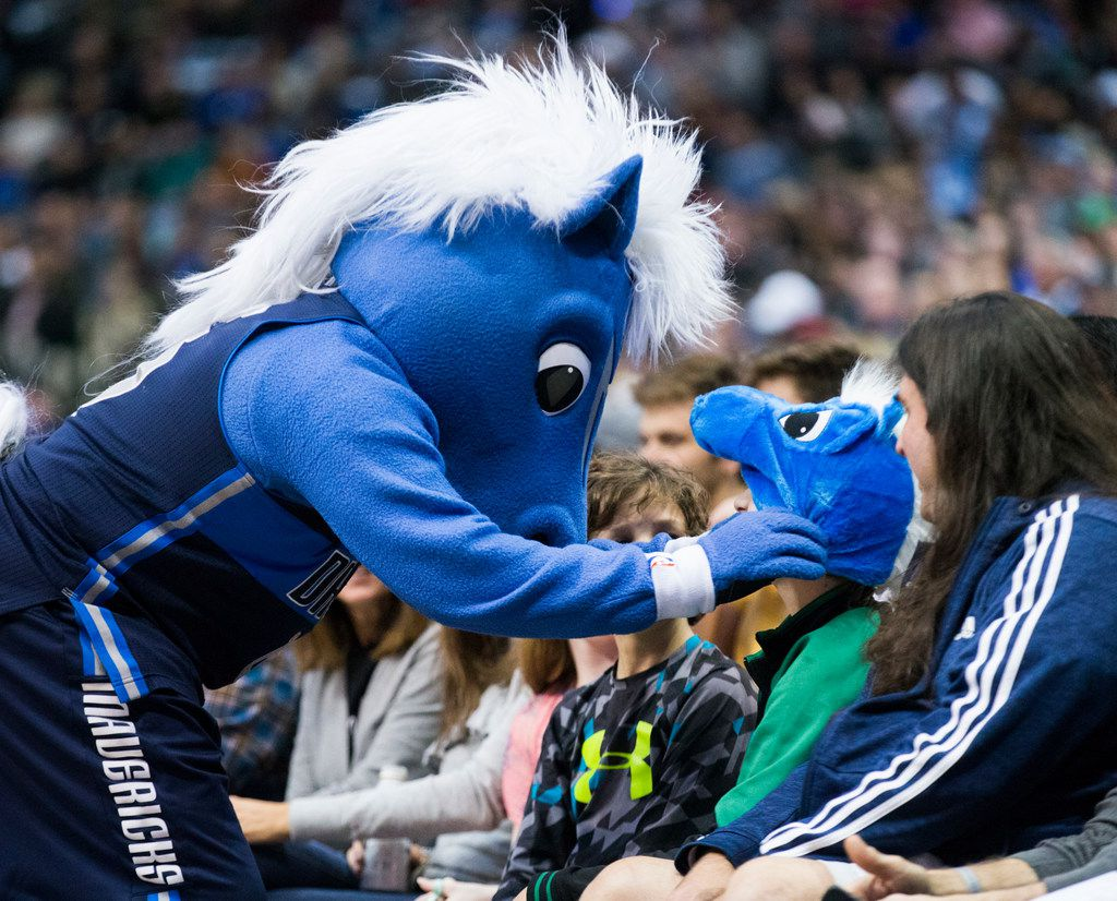 Dallas Mavericks mascot Champ adjusts a Champ cap on a fan during the first quarter of an NBA game between the Dallas Mavericks and the Brooklyn Nets on Wednesday, November 21, 2018 at the American Airlines Center in Dallas. (Ashley Landis/The Dallas Morning News)