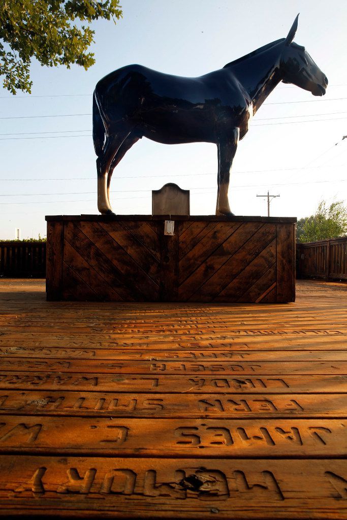 A mule memorial stands on the deck of the Hugh Young Visitors Center and Chamber of Commerce office in Muleshoe, Texas, Tuesday, August 1, 2017. The Mule is the high school mascot where new Oklahoma Sooners head football coach Lincoln Riley got his football start. (Tom Fox/The Dallas Morning News)
