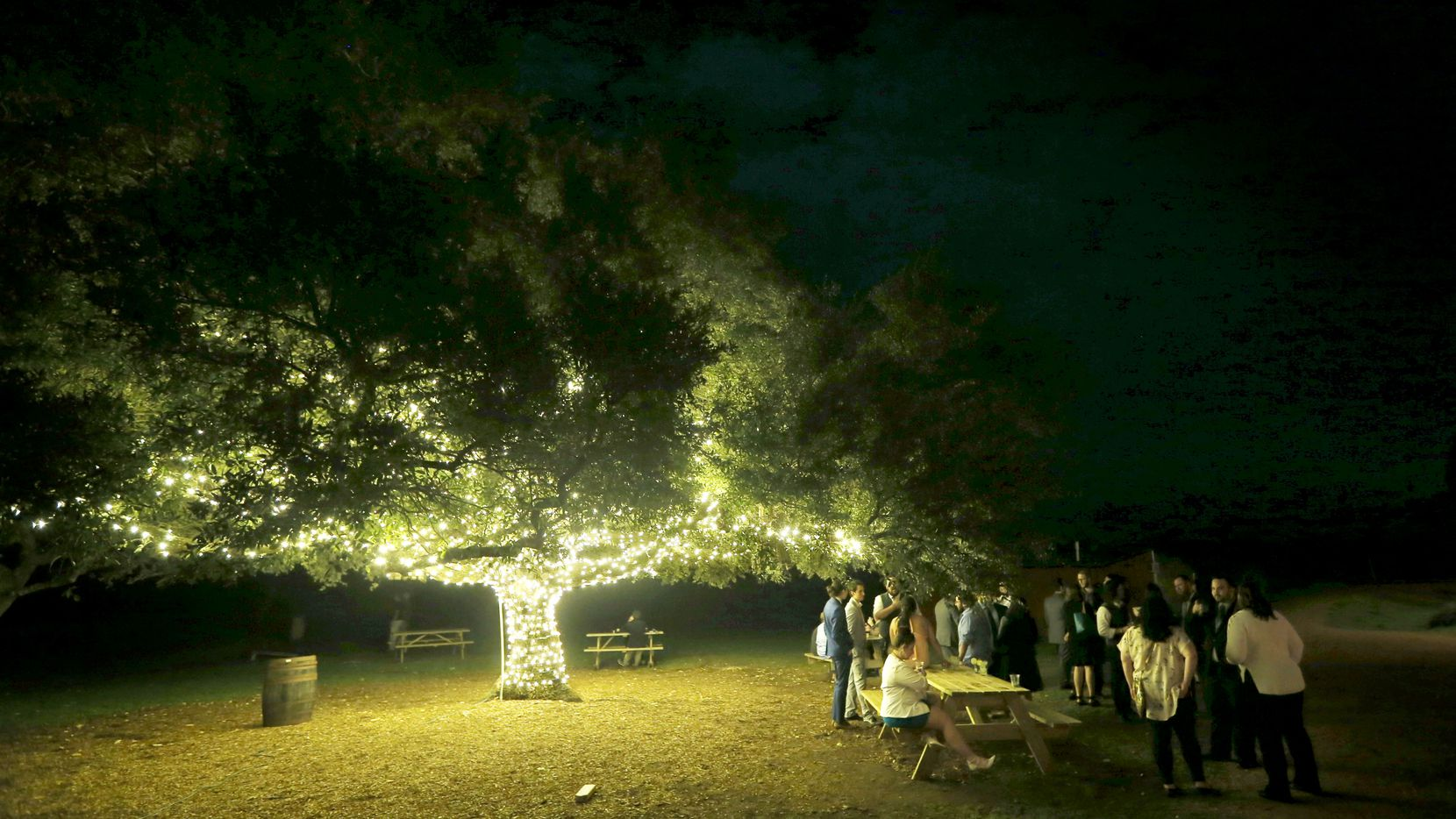 People spend time under one of the oak trees at  a brewer in Dripping Springs, Texas  on Saturday, February 24, 2018.