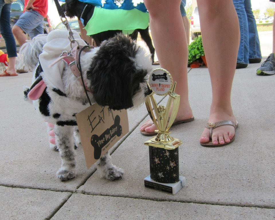 Braylee won for cutest costume during a previous Howl-O-Ween at Three Dog Bakery in Plano. (2013 File Photo/Tatia Woldt)