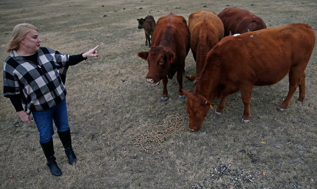 Mayor Jess Herbst talks about her cattle at her farm in New Hope.