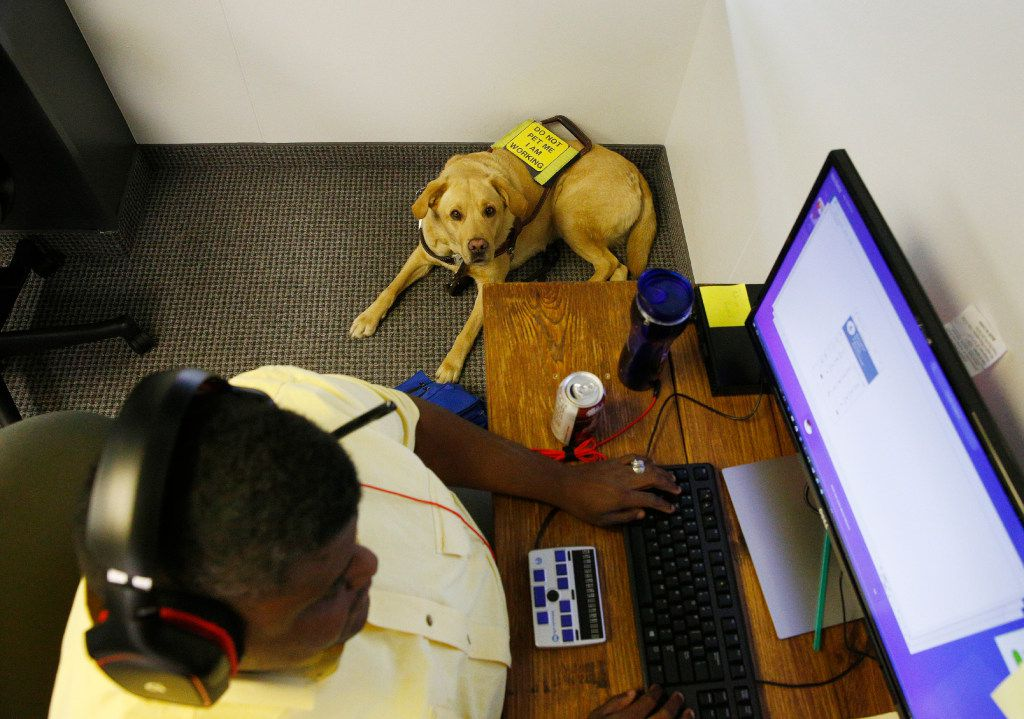 Adrian Buard's seeing eye dog, Dash, sits next to him in the call center at Bold Sales Solutions, a subsidiary of Dallas Lighthouse for the Blind in Dallas on June 19, 2017.  (Nathan Hunsinger/The Dallas Morning News)