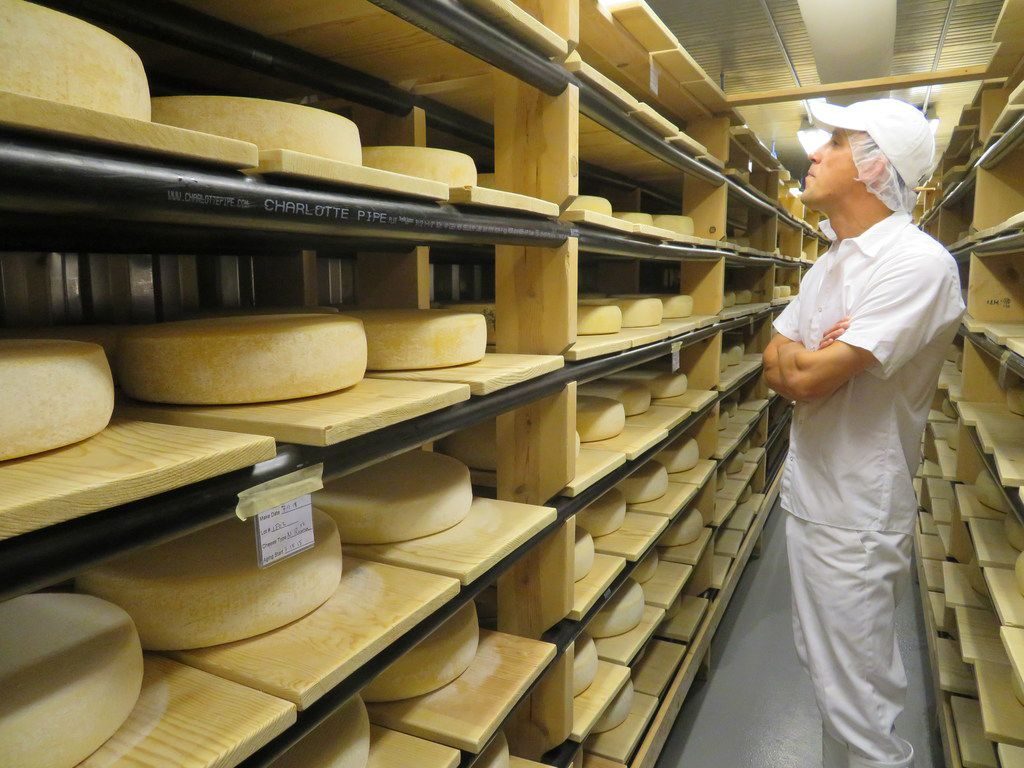 Aaron Langdon, head cheesemaker at Nicasio Valley Cheese Co., checks the aging progress of rounds of Nicasio Reserve, an Alpine-style cheese that ages for more than three months.