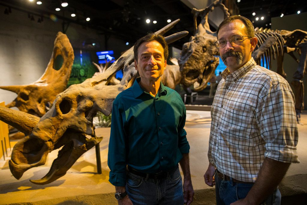 Paleontologists Tony Fiorillo (left) and Ron Tykoski attended the ribbon-cutting for the new Paleo Lab in the T. Boone Pickens Life Then and Now Hall of the Perot Museum of Nature and Science on Tuesday. Behind them is the horned dinosaur Pachyrhinosaurus perotorum, a species the team discovered in Alaska.