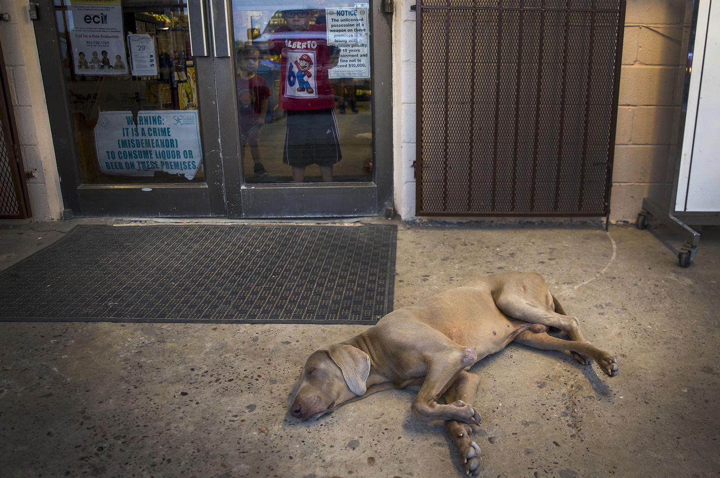 Children peek out of the C & C Kountry Store as a dog sleeps on the pavement outside on May 10, 2017, in El Cenizo, Texas.