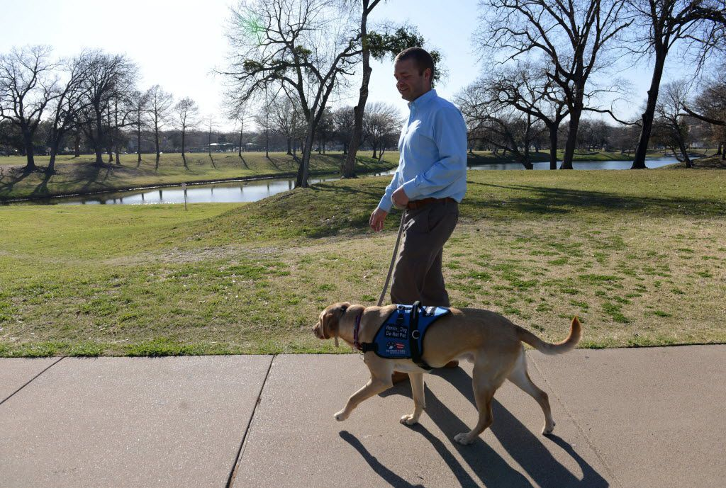 Dustin Deweerd, walks his 3-year-old Labrador service dog Gunny, at Lake Cliff Park on March 20, 2014 in Dallas. Gunny helps Deweerd, a U.S. Army veteran, cope with his Post Traumatic Stress Syndrome after serving in Irag and Afghanistan for two years. (Rose Baca/Neighborsgo Staff Photographer) 04072014xMETRO