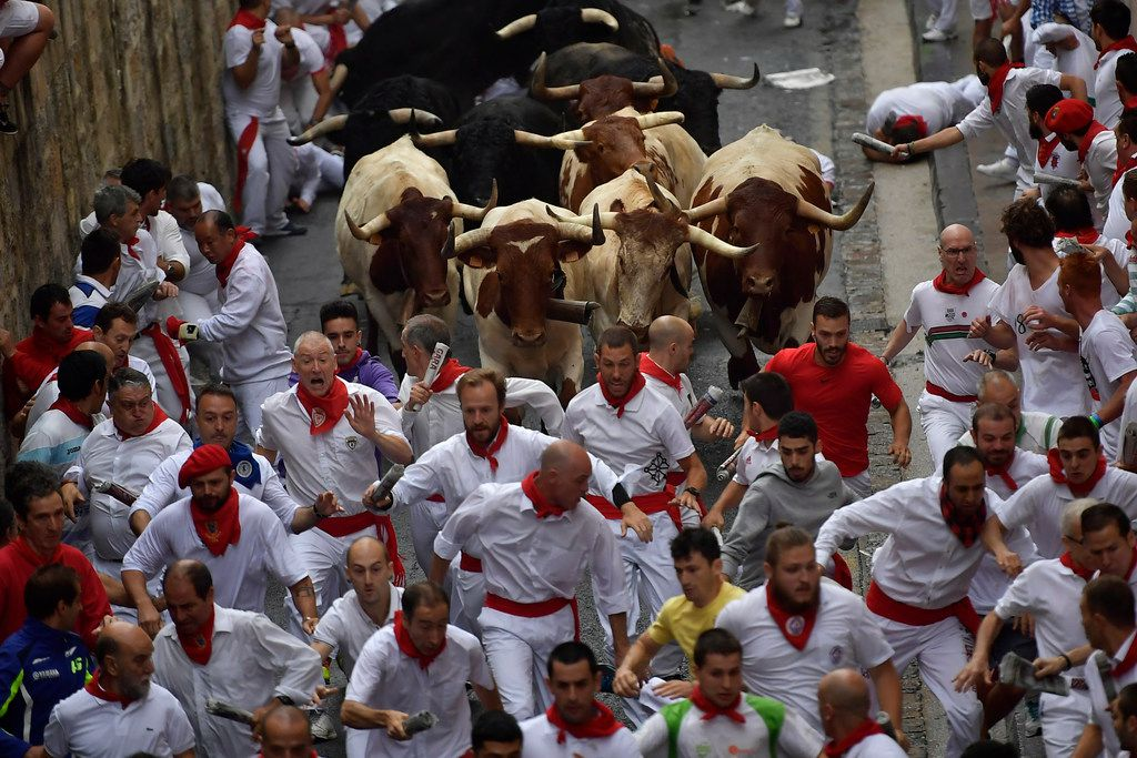 Revellers run in front of Puerto de San Lorenzo's fighting bulls during the running of the bulls at the San Fermin Festival.