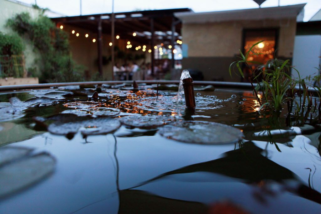 Lily pads float inside the running fountain near the patio area at the pop-up location for Uchi restaurant.