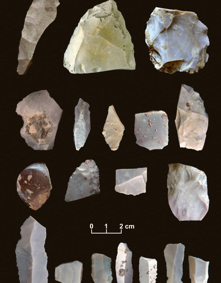 An image from 2011 shows some of the items researchers discovered at the Buttermilk Creek site in Texas.