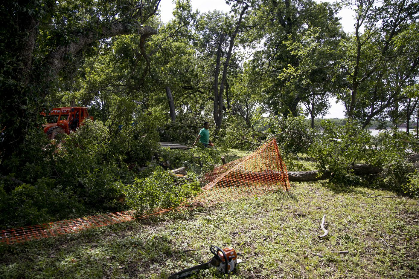 An Oncor spokeswoman estimates that up to 4% of Dallas vegetation was affected by the storm.