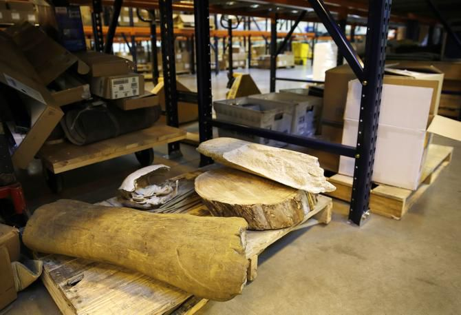 """Pieces of prehistoric artifacts used for study are stored at the Institute for Creation Research's warehouse off Royal Lane. """"Our attempt is to demonstrate that the Bible is accurate, not just religiously authoritative,"""" said Henry Morris III, CEO of the nonprofit."""