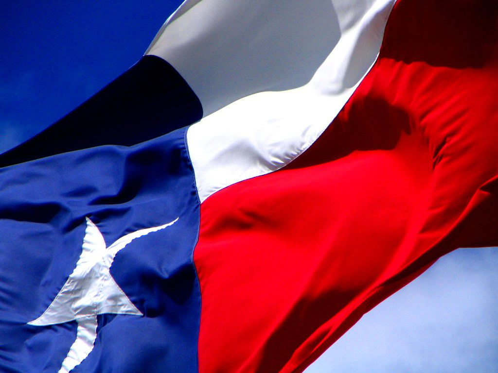 The state flag of Texas (File Photo)