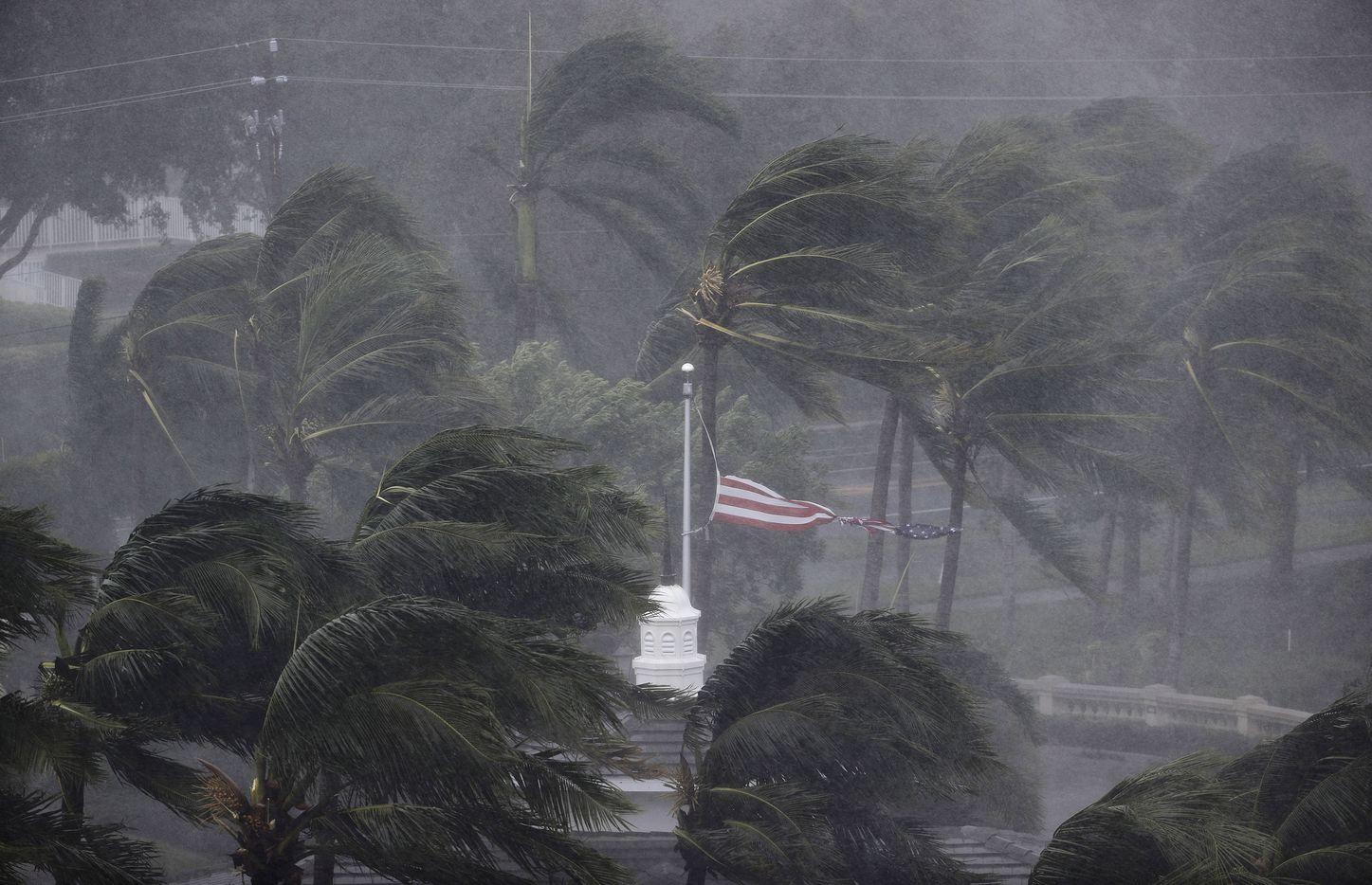 An American flag is torn as Hurricane Irma passes through Naples, Fla., Sunday, Sept. 10, 2017.
