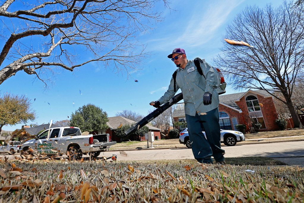 Dallas might consider a moratorium on leaf blowers, as the Dallas City Council discussed possible changes to the city's noise ordinance during a committee meeting on Monday.