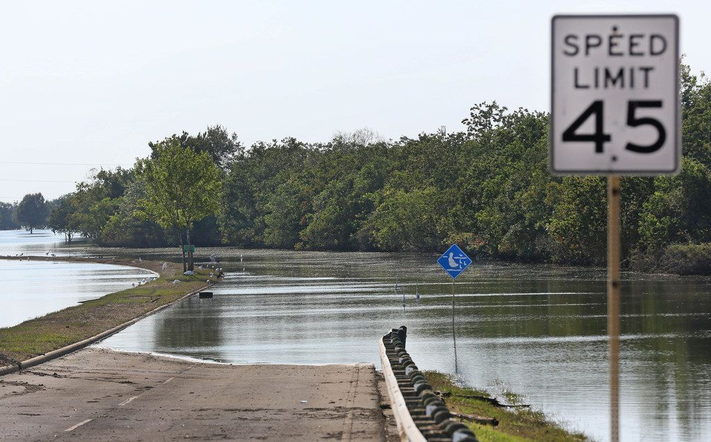 A park on the edge of the Barker Reservoir still stands flooded in west Houston on Monday, September 11, 2017. (Louis DeLuca/The Dallas Morning News)