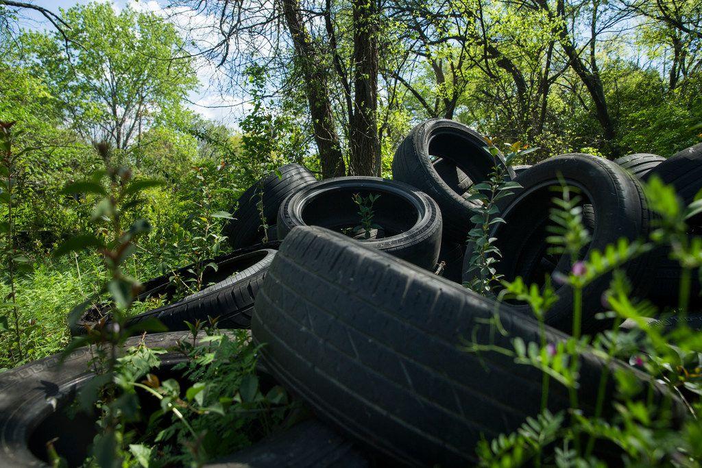 Used tires, one of multiple piles, litter an area along Five Mile Creek in Dallas. Willie F. Johnson Jr., principal of South Oak Cliff High School, said students use this area every day to get to and from school.