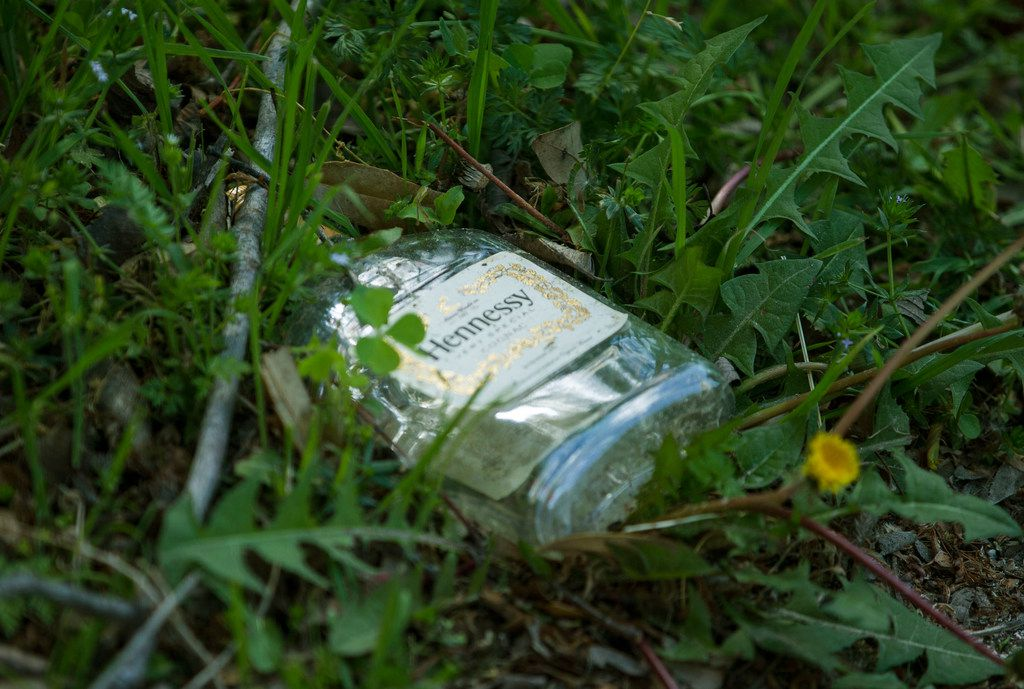 An empty liquor bottle litters the ground beside where South Oak Cliff High School students walk to and from school near an undeveloped area along Five Mile Creek.