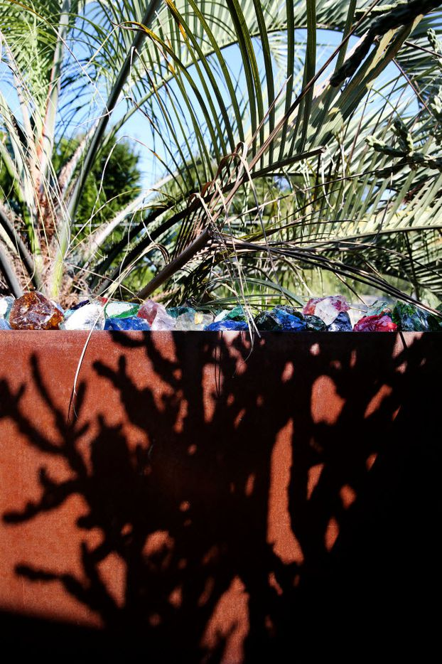 A cholla cactus cast shadows on a the wall surrounding the front porch