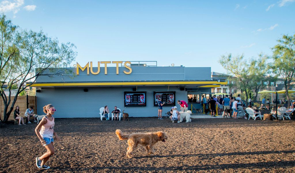 Dog owners enjoy food and beer while their dogs enjoy play time at Mutts Canine Cantina at Clearfork in Fort Worth on Oct. 4, 2018. Mutts will offer $3 Barkaritas from noon to 8 p.m. Feb. 22.