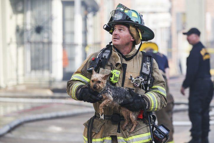 Un bombero rescata un Yorkie de un complejo de apartamentos que se incendió el martes. RYAN MICHALESKO/DMN
