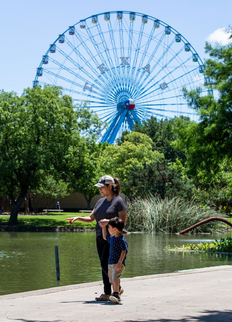 Under the Texas Star Ferris Wheel, Veronica Zubia and her son Arturo look at the number of turtles in Leonhardt Lagoon at the first Fair Park Field Day of the summer on June 7.