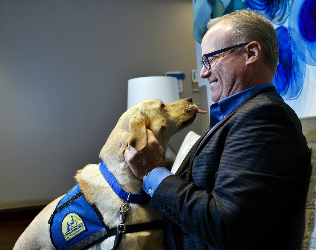 Jim Hinton meets a Labrador named Rivers from Canine Companions for Independence at the Baylor Scott & White Health administrative offices in Dallas.