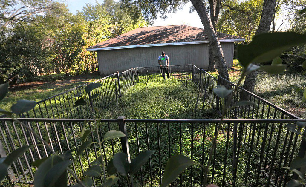 Jerry Hawkins looks over an area thought to be an old freedman's cemetery on property not far from Garvin Cemetery, near the intersection of Midway Road and Northwest Highway.