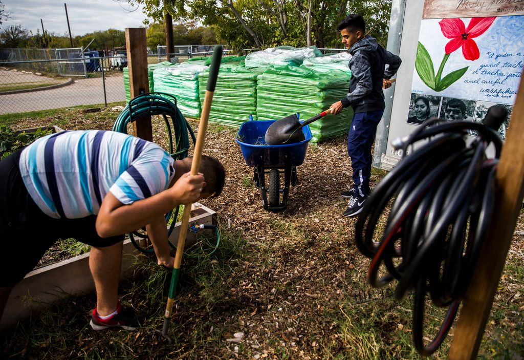 Interns Abel Ipina, 14, left and Brian Cantu, 15, remove weeds from a walking path.