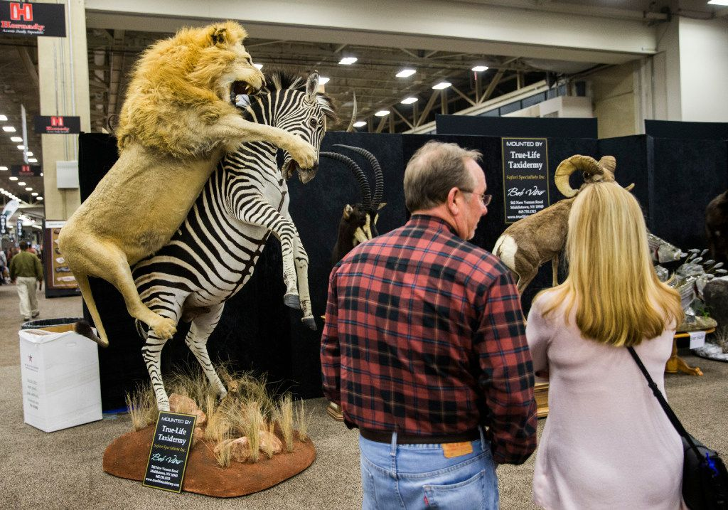 A couple looks at taxidermied animals at the Adventure Convention Sporting Expo on Thursday, January 5, 2017 at the Kay Bailey Hutchison Convention Center in downtown Dallas.