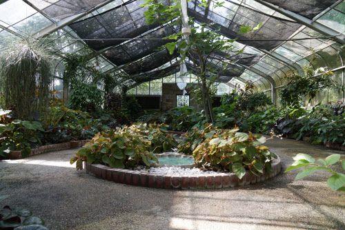 El Jardín Botánico pasará a costar $12 una vez que lo apruebe el Concejo de Fort Worth. DMN
