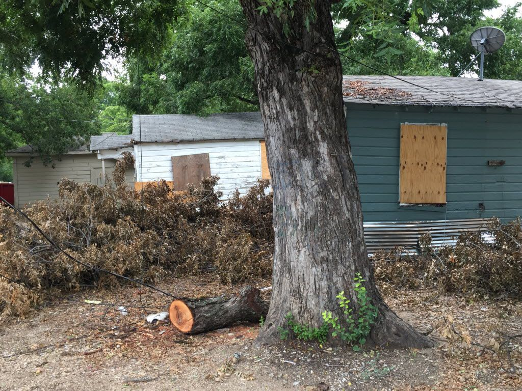 A row of bungalows on Clarendon Drive are in disrepair and have landed on the August 10 Drops list