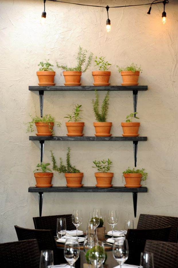 Fresh herbs line the walls at Pink Magnolia in Oak Cliff.