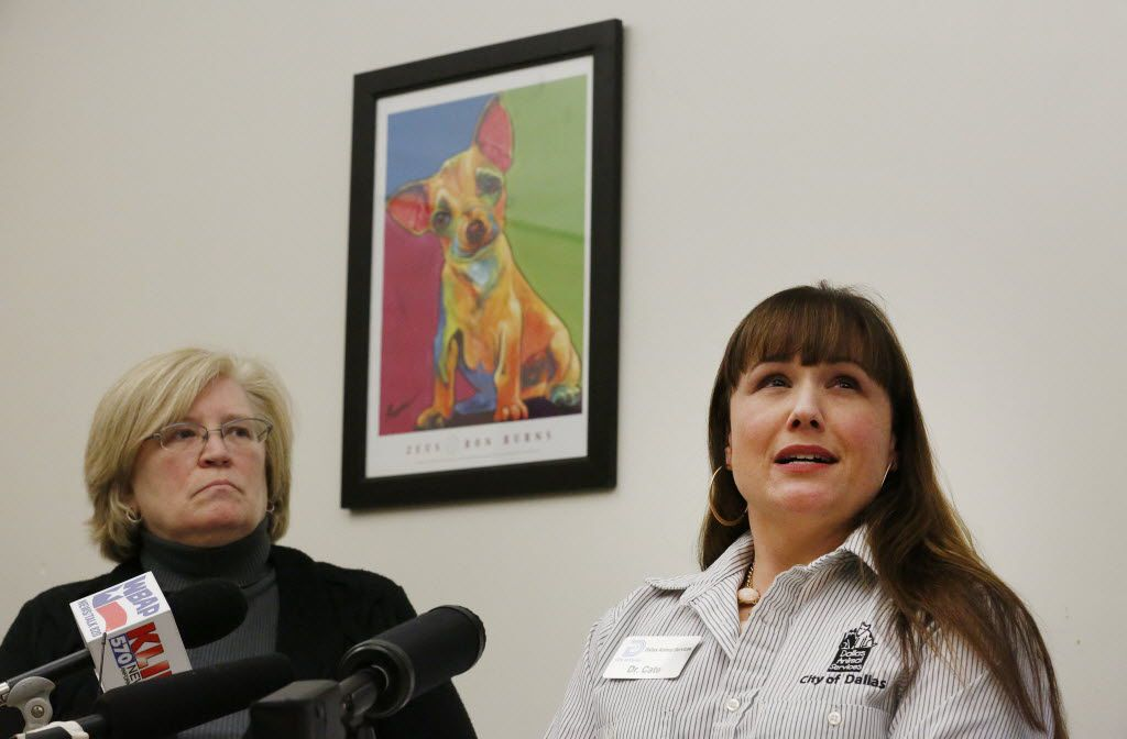 Jody Jones (left), director of Dallas Animal Services, and Dr. Cate McManus, director of operations for Dallas Animal Services, speak to the media during a press conference regarding the euthanasia of four Australian Shepherds that were placed in the care of Dallas Animal Services at the headquarters Friday January 9, 2015. (Andy Jacobsohn/The Dallas Morning News)