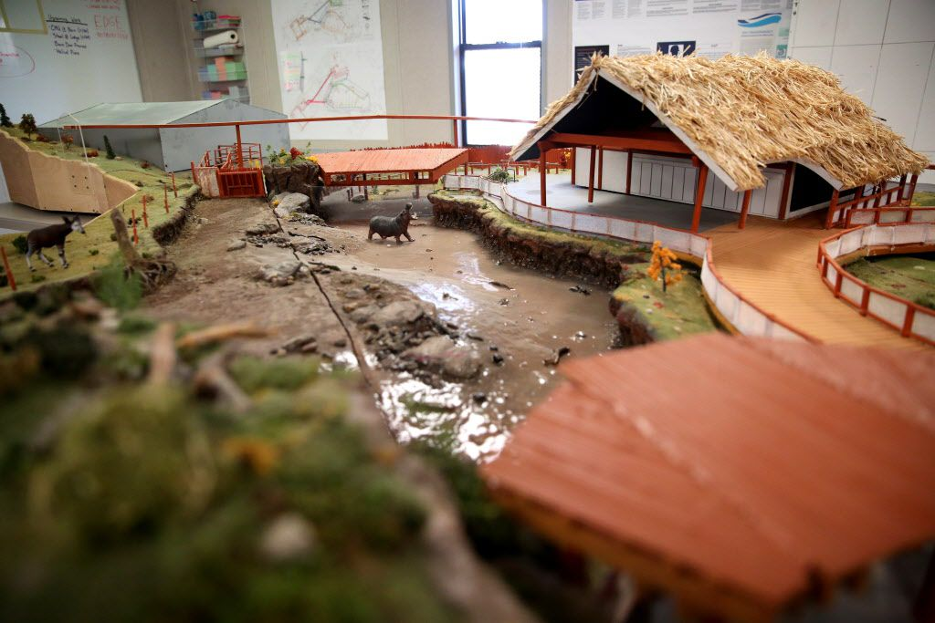 A model of the Simmons Hippo Outpost was on display at the Dallas Zoo on Dec. 1.