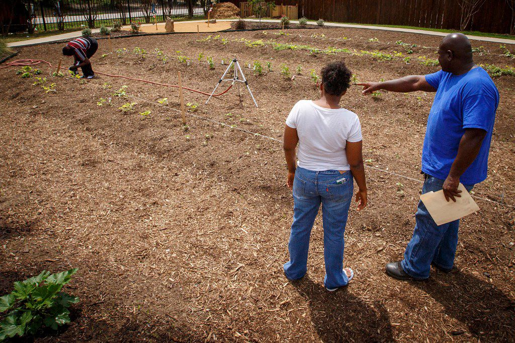 Horticulture specialist Tyrone Day directs women from the Austin Street Center's Sisterhood program as they work in the New Hope Garden.