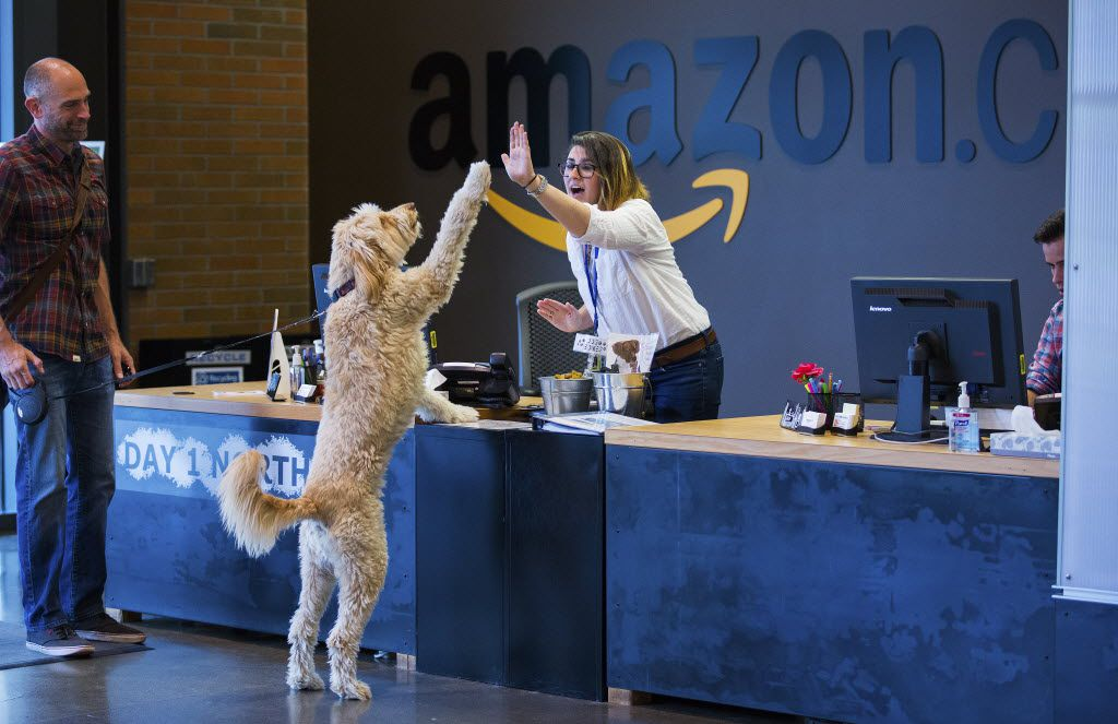 Chris Clare and his dog, Crosby, greet receptionist Andrea Kraus on Amazon's pet-friendly campus in Seattle on Aug. 3, 2015.