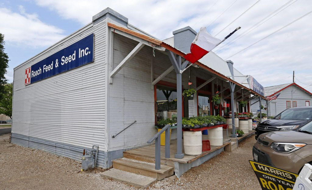 Roach Feed and Seed, a 1930s farm store, is investor Robert Smith's most recent charge in preserving the history of downtown Garland. (Jae S. Lee/The Dallas Morning News)